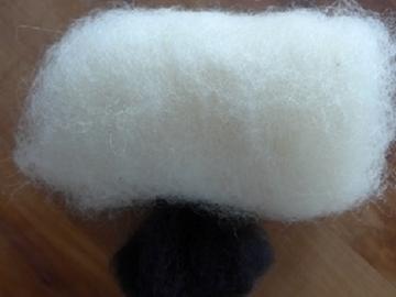 Bild von weisse Wolle mit schwarz Schaf Gr. 2