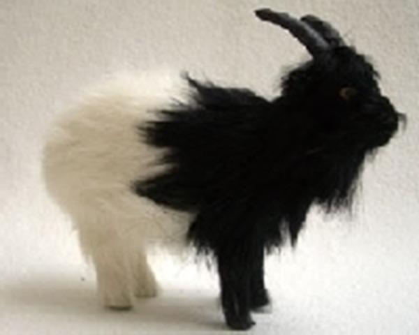 Bild von Ziege stehend schwarz/weiss