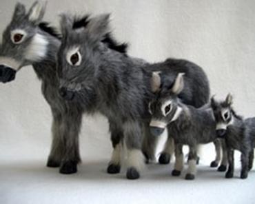 Bild für Kategorie Esel