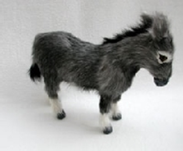 Bild von Esel klein stehend