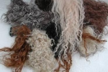Bild für Kategorie Pelzresten