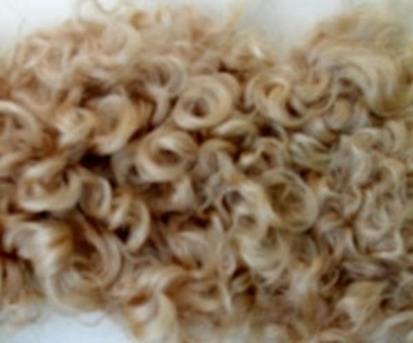 Bild von Fellperücke blond kraus kurz