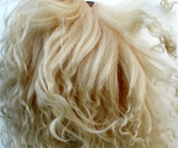 Bild von Fellperücke blond