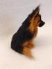 Bild von Schäferhund sitzend