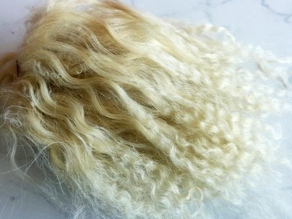 Bild von Tibetlamm blond 3+4